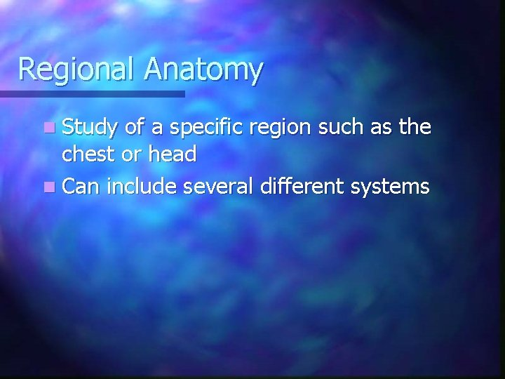 Regional Anatomy n Study of a specific region such as the chest or head