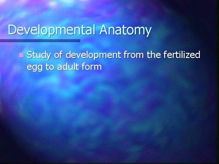 Developmental Anatomy n Study of development from the fertilized egg to adult form