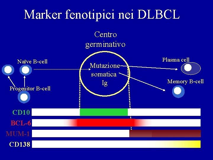 Marker fenotipici nei DLBCL Centro germinativo Naïve B-cell Progenitor B-cell CD 10 BCL-6 MUM-1