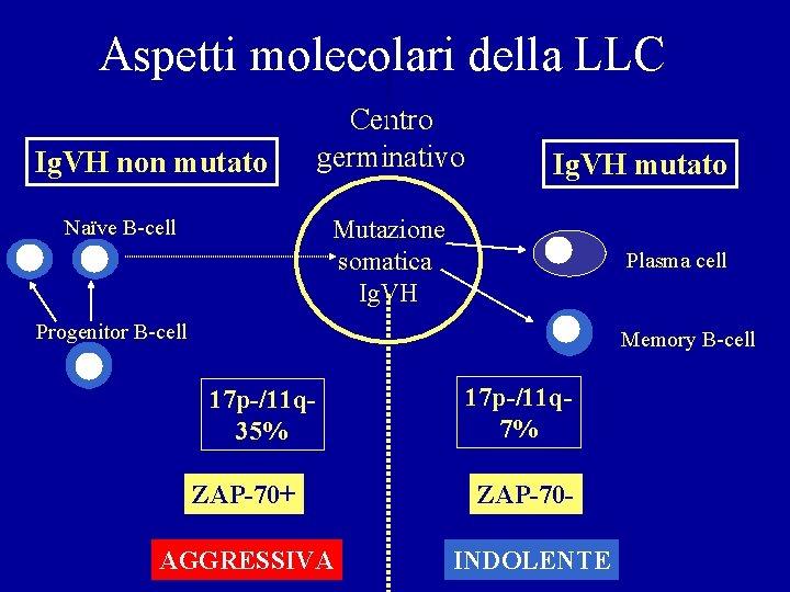 Aspetti molecolari della LLC Ig. VH non mutato Centro germinativo Ig. VH mutato Mutazione
