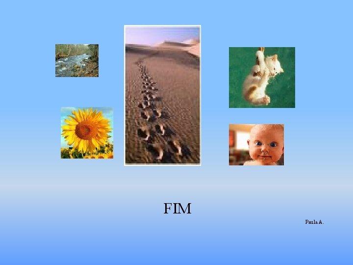 Fi FIM Paula A.