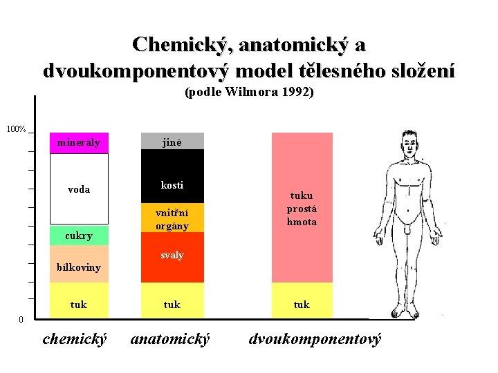 Chemický, anatomický a dvoukomponentový model tělesného složení (podle Wilmora 1992) 100% minerály voda cukry