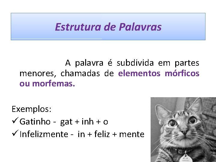 Estrutura de Palavras A palavra é subdivida em partes menores, chamadas de elementos mórficos