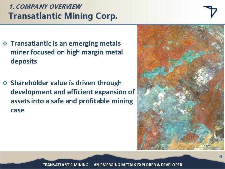1. COMPANY OVERVIEW Transatlantic Mining Corp. v Transatlantic is an emerging metals miner focused