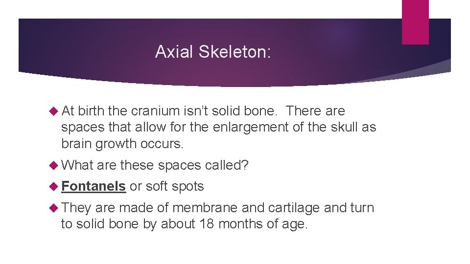 Axial Skeleton: At birth the cranium isn't solid bone. There are spaces that allow