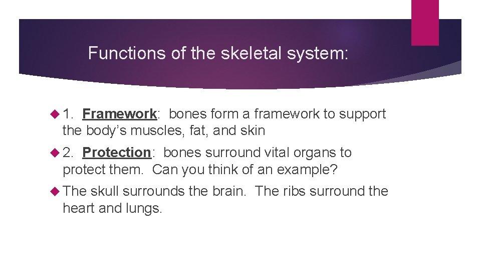 Functions of the skeletal system: 1. Framework: bones form a framework to support the