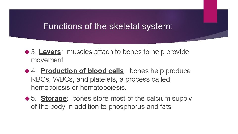 Functions of the skeletal system: 3. Levers: muscles attach to bones to help provide