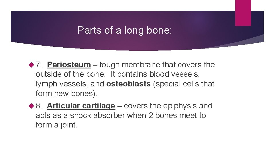Parts of a long bone: 7. Periosteum – tough membrane that covers the outside