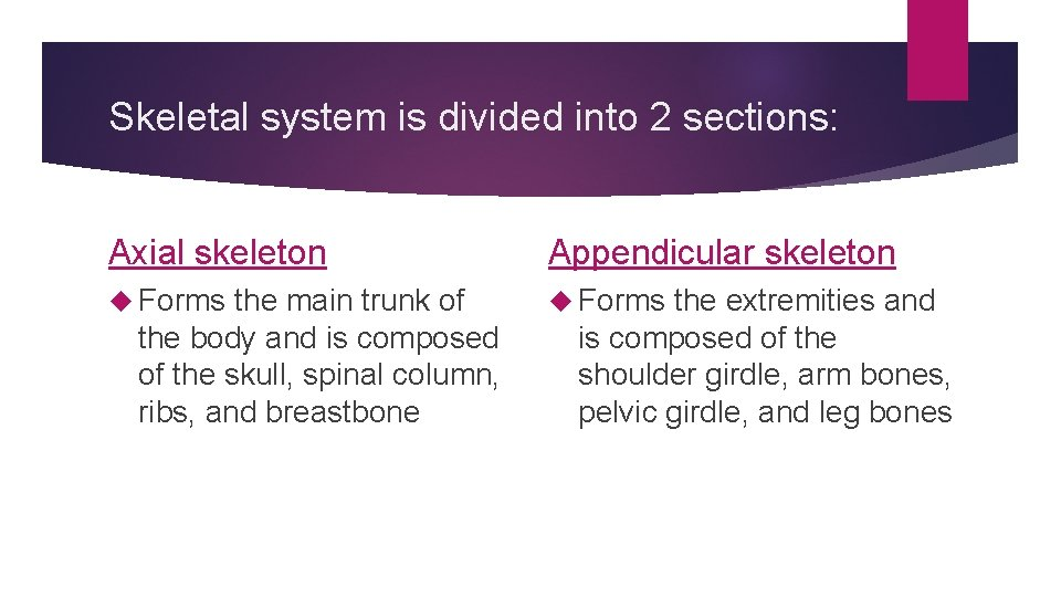 Skeletal system is divided into 2 sections: Axial skeleton Appendicular skeleton Forms the main