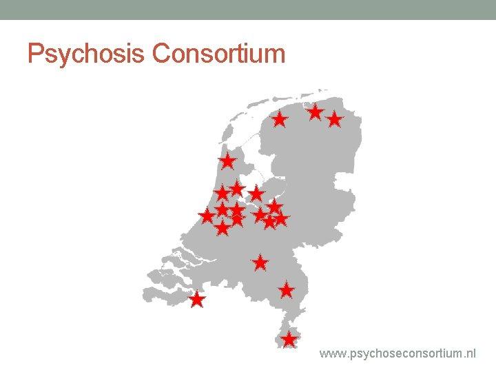 Psychosis Consortium www. psychoseconsortium. nl