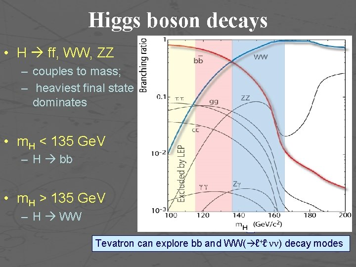Higgs boson decays • H ff, WW, ZZ – couples to mass; – heaviest