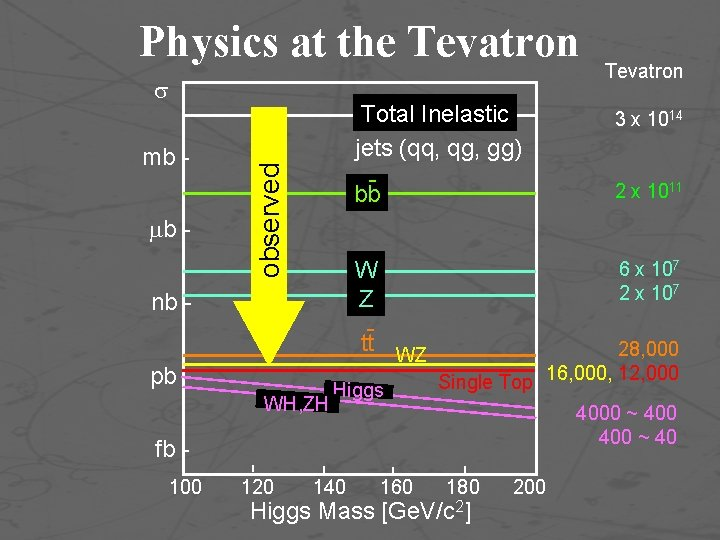 Physics at the Tevatron mb b - observed nb pb WH, ZH Total Inelastic