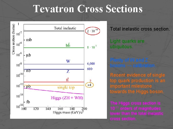 Tevatron Cross Sections Total inelastic cross section. Light quarks are ubiquitous. Plenty of W