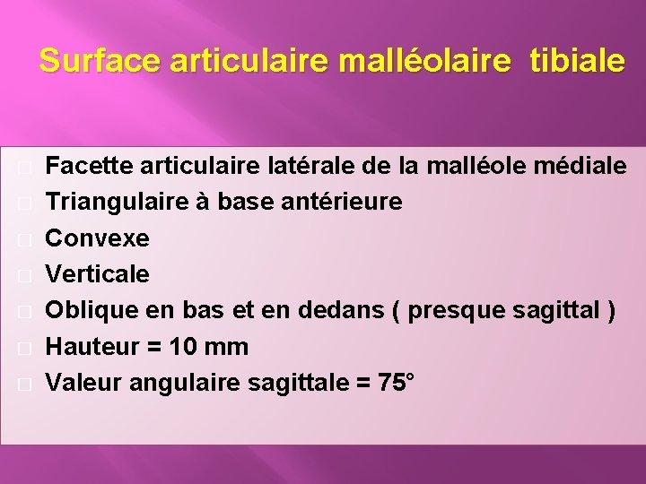 Surface articulaire malléolaire tibiale � � � � Facette articulaire latérale de la malléole