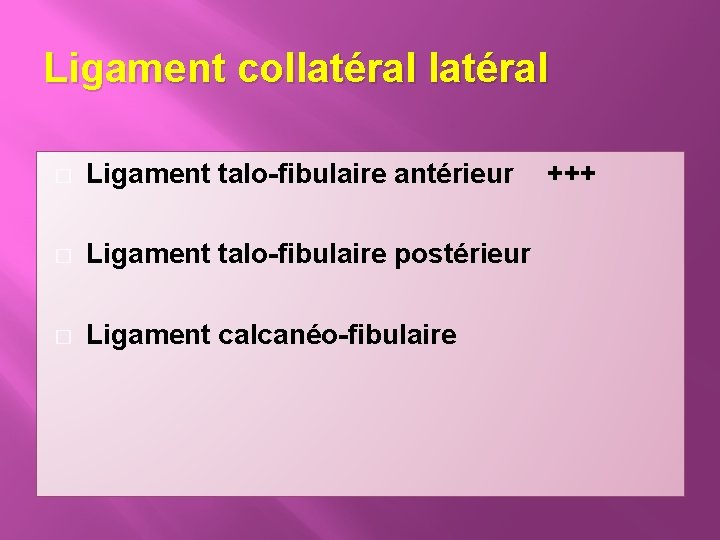 Ligament collatéral � Ligament talo-fibulaire antérieur � Ligament talo-fibulaire postérieur � Ligament calcanéo-fibulaire +++