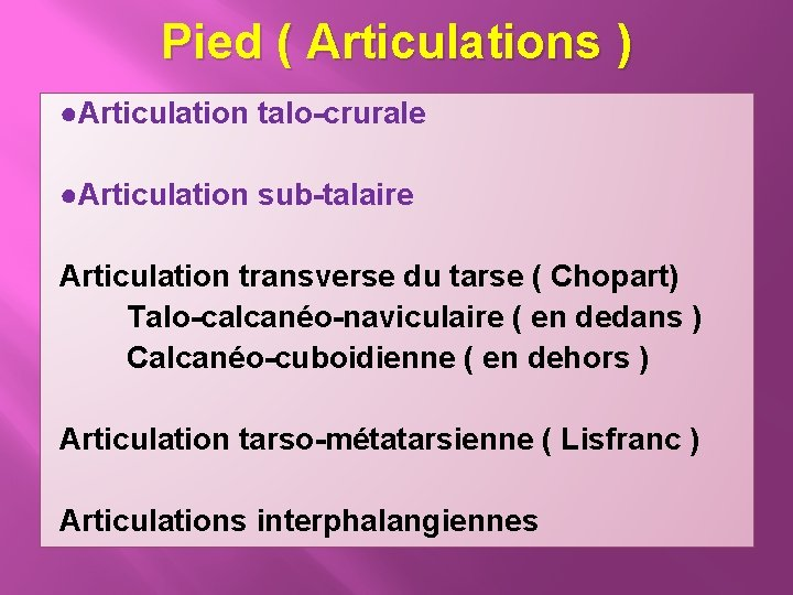 Pied ( Articulations ) ●Articulation talo-crurale ●Articulation sub-talaire Articulation transverse du tarse ( Chopart)