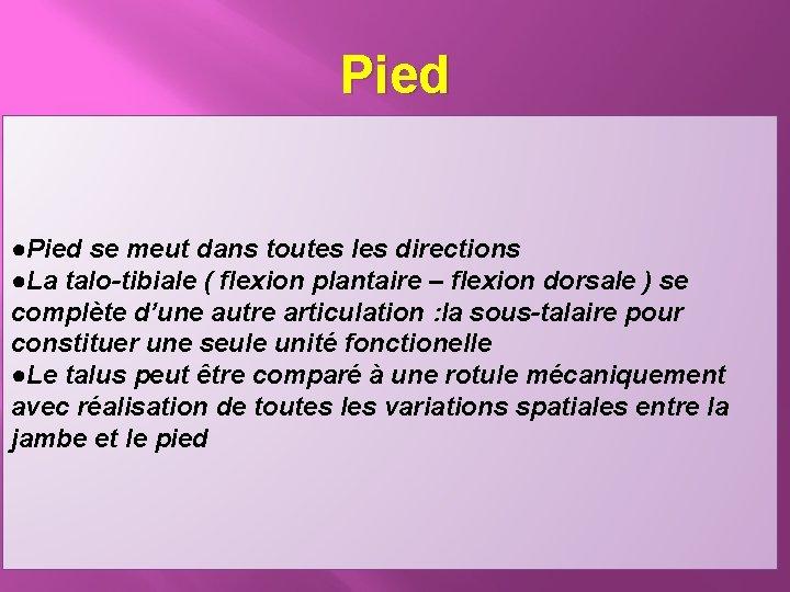 Pied ●Pied se meut dans toutes les directions ●La talo-tibiale ( flexion plantaire –