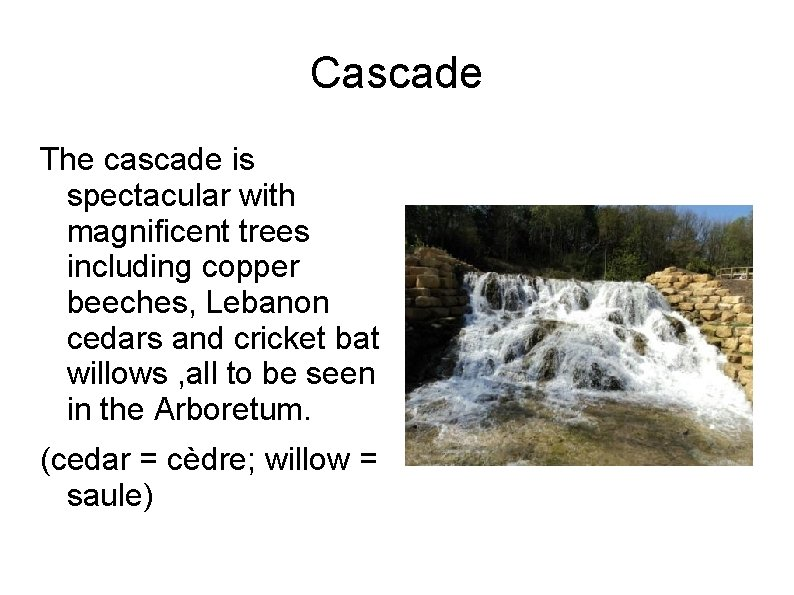 Cascade The cascade is spectacular with magnificent trees including copper beeches, Lebanon cedars and