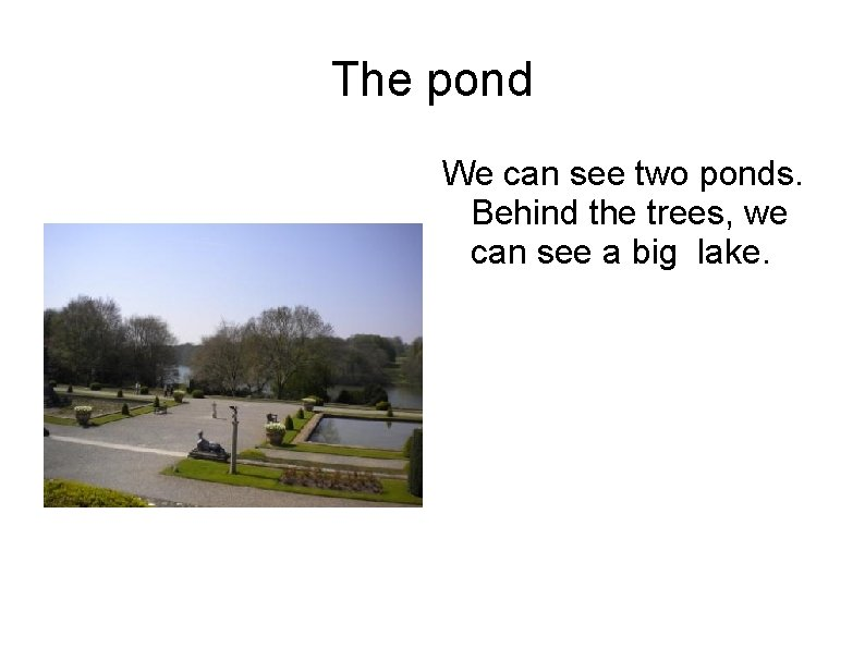 The pond We can see two ponds. Behind the trees, we can see a