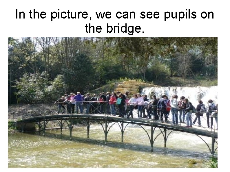 In the picture, we can see pupils on the bridge.