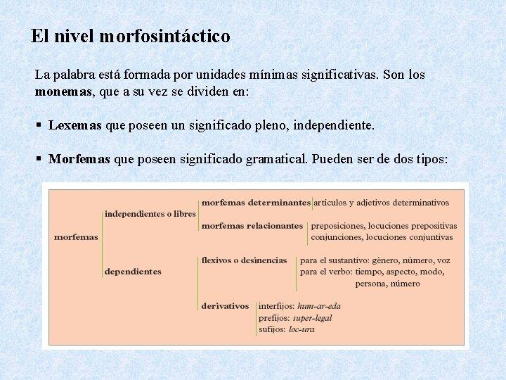 El nivel morfosintáctico La palabra está formada por unidades mínimas significativas. Son los monemas,