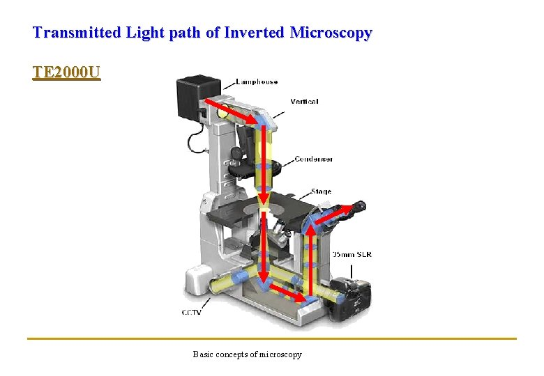 Transmitted Light path of Inverted Microscopy TE 2000 U Basic concepts of microscopy