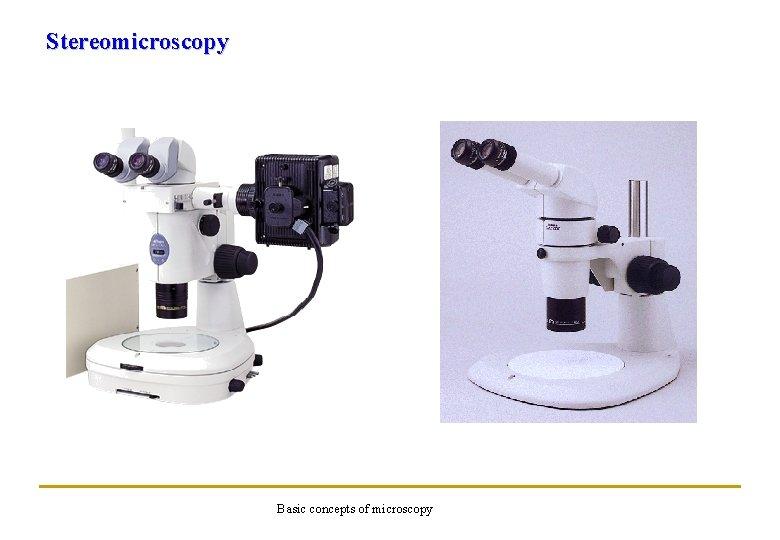 Stereomicroscopy Basic concepts of microscopy