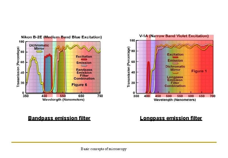 Bandpass emission filter Basic concepts of microscopy Longpass emission filter