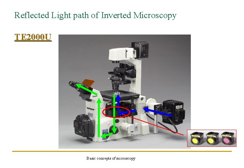 Reflected Light path of Inverted Microscopy TE 2000 U Basic concepts of microscopy