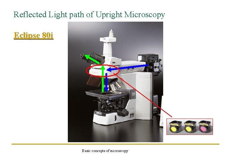 Reflected Light path of Upright Microscopy Eclipse 80 i Basic concepts of microscopy