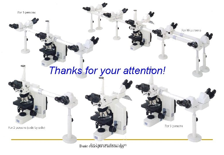 Thanks for your attention! Basic concepts of microscopy