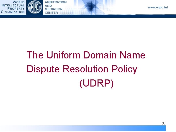 The Uniform Domain Name Dispute Resolution Policy (UDRP) 30