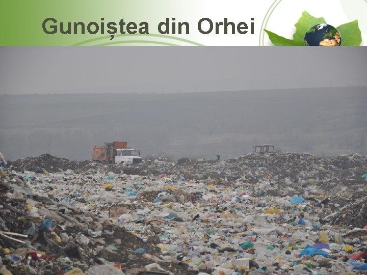 Gunoiștea din Orhei