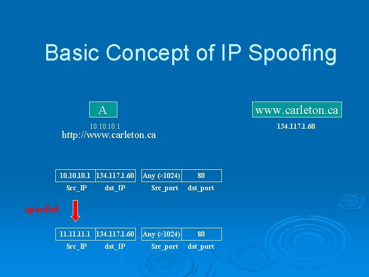 Basic Concept of IP Spoofing A www. carleton. ca 10. 10. 1 134. 117.