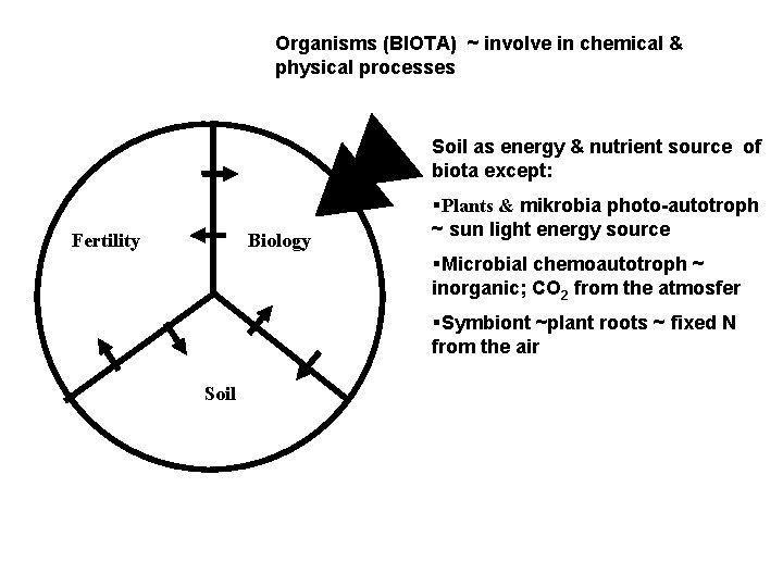 Organisms (BIOTA) ~ involve in chemical & physical processes Soil as energy & nutrient