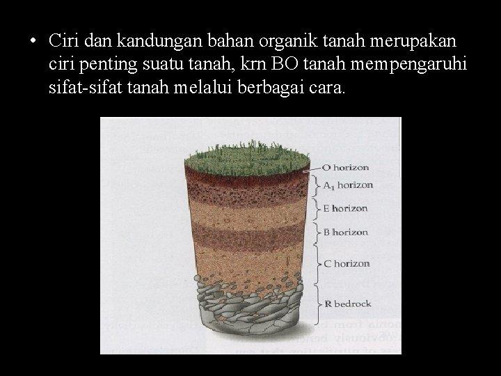 • Ciri dan kandungan bahan organik tanah merupakan ciri penting suatu tanah, krn