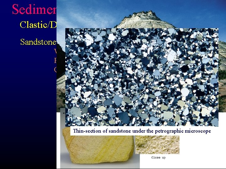 Sedimentary Rocks Clastic/Detrital Rocks Sandstone- Composed of sand-sized particles Well-sorted: water or wind Forms