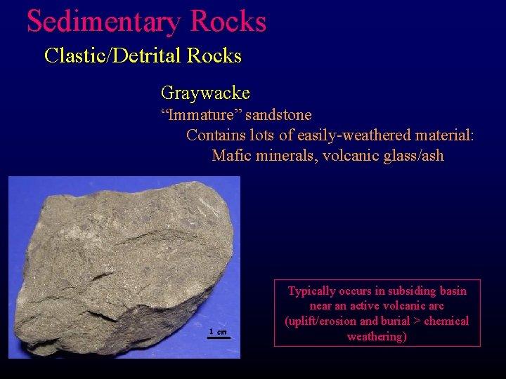"Sedimentary Rocks Clastic/Detrital Rocks Graywacke ""Immature"" sandstone Contains lots of easily-weathered material: Mafic minerals,"