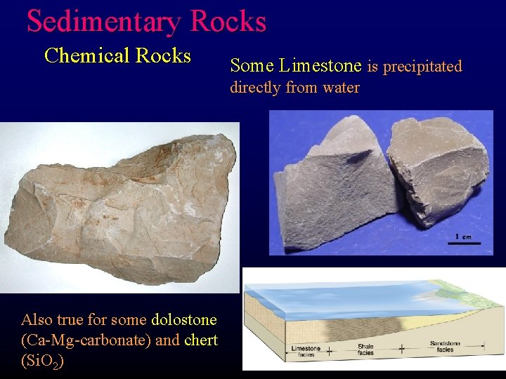 Sedimentary Rocks Chemical Rocks Some Limestone is precipitated directly from water Also true for