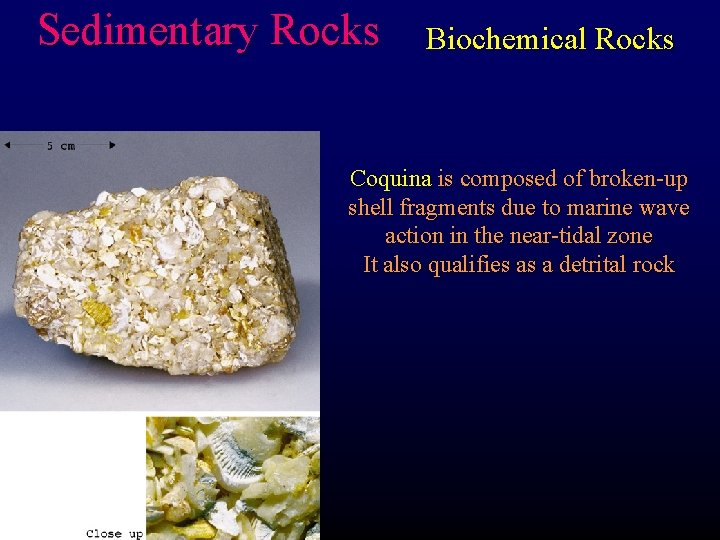 Sedimentary Rocks Biochemical Rocks Coquina is composed of broken-up shell fragments due to marine