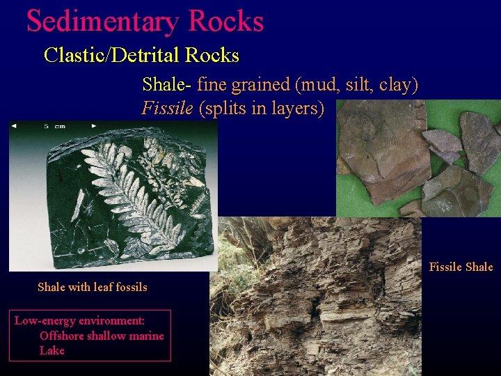 Sedimentary Rocks Clastic/Detrital Rocks Shale- fine grained (mud, silt, clay) Fissile (splits in layers)