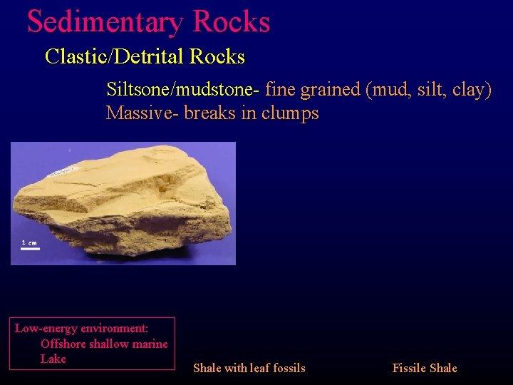 Sedimentary Rocks Clastic/Detrital Rocks Siltsone/mudstone- fine grained (mud, silt, clay) Massive- breaks in clumps