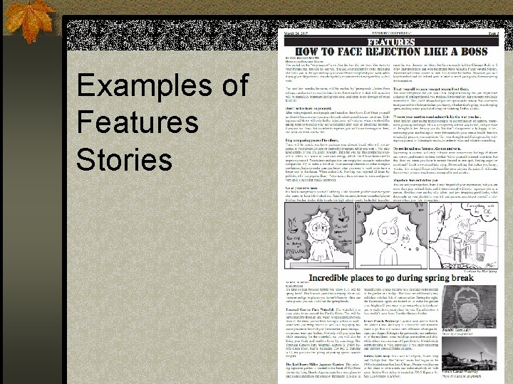 Examples of Features Stories