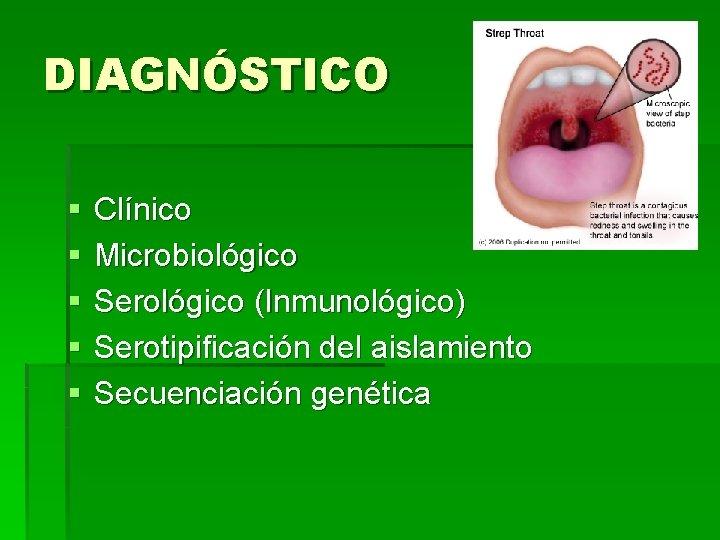 DIAGNÓSTICO § § § Clínico Microbiológico Serológico (Inmunológico) Serotipificación del aislamiento Secuenciación genética