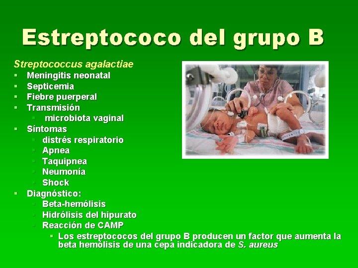 Estreptococo del grupo B Streptococcus agalactiae § § Meningitis neonatal Septicemia Fiebre puerperal Transmisión