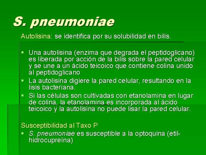 S. pneumoniae Autolisina: se identifica por su solubilidad en bilis. § Una autolisina (enzima