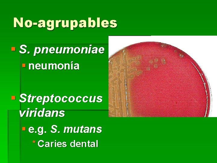 No-agrupables § S. pneumoniae § neumonía § Streptococcus viridans § e. g. S. mutans