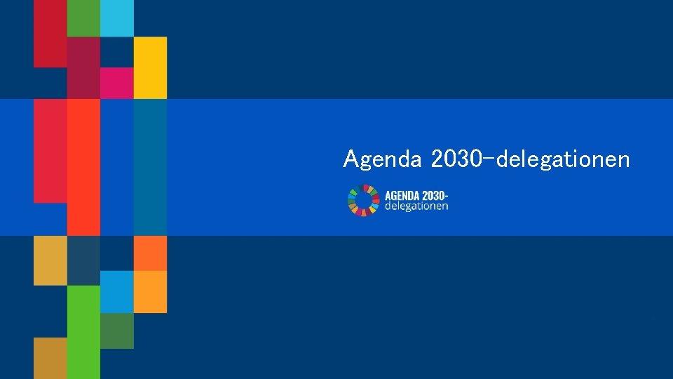 Agenda 2030 -delegationen