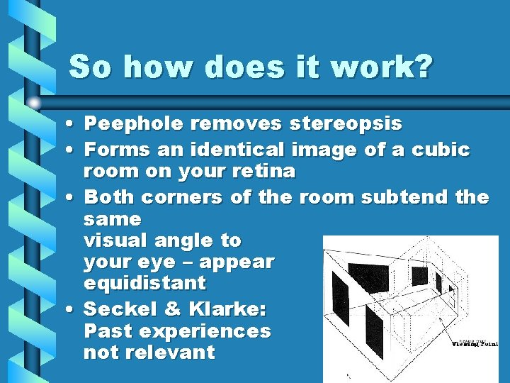 So how does it work? • Peephole removes stereopsis • Forms an identical image