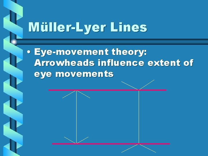 Müller-Lyer Lines • Eye-movement theory: Arrowheads influence extent of eye movements